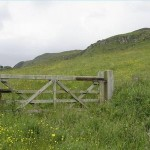 article-new-ehow-images-a04-is-ck-write-contract-pasture-rental-800x800