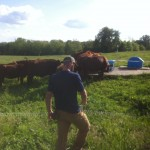 Farm Internships