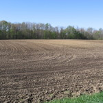 tilled-field